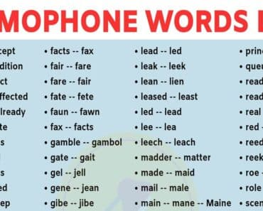 Homophones List: 400+ Common Homophones in English for ESL Learners! 1