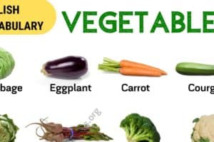 List of Vegetables: Popular Vegetables Names with the Picture! 10