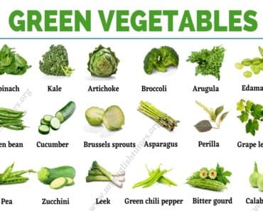 Green Vegetables: List of 31 Types of Vegetables that Have Green Color 3