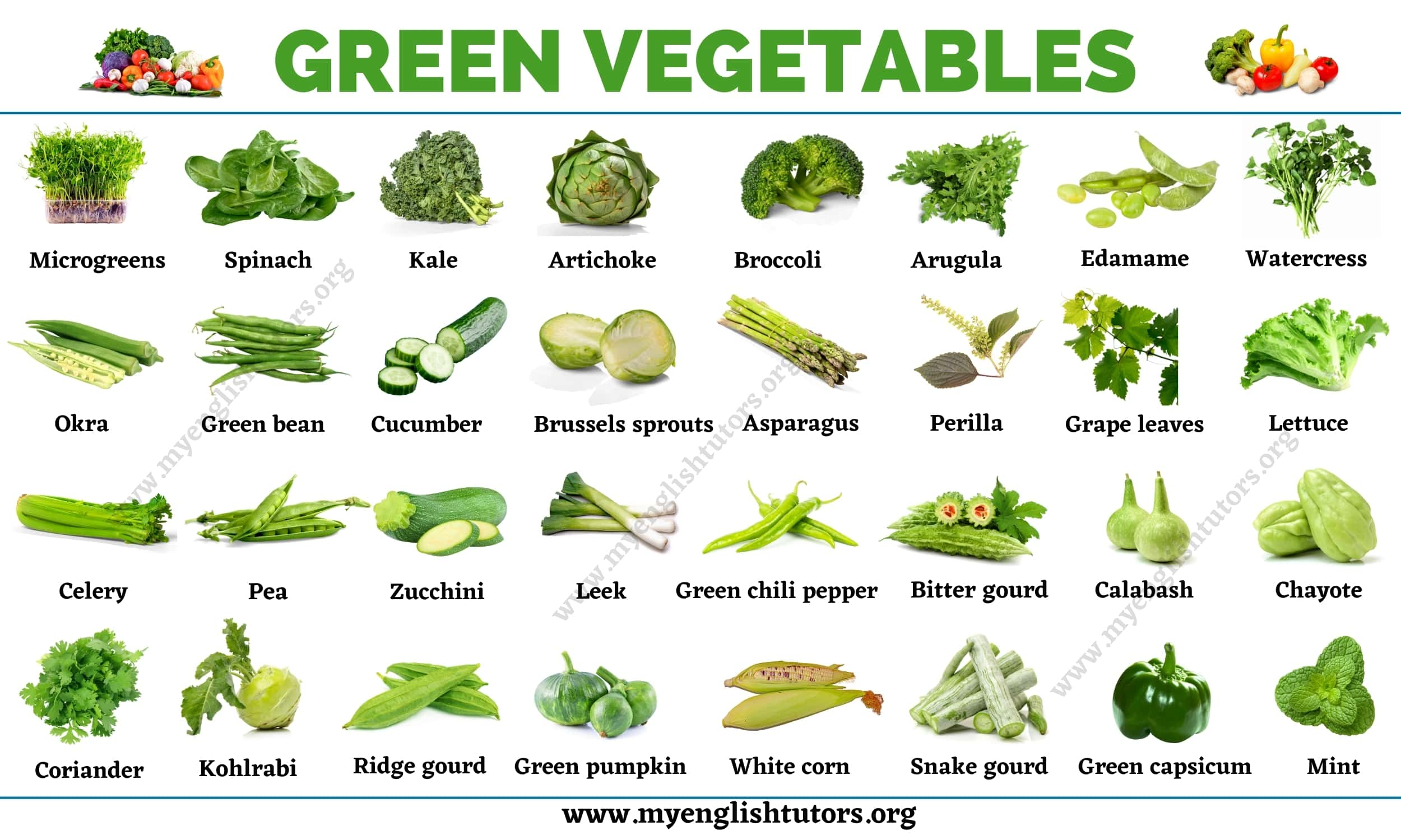 Green Vegetables: List of 31 Types of Vegetables that Have Green Color