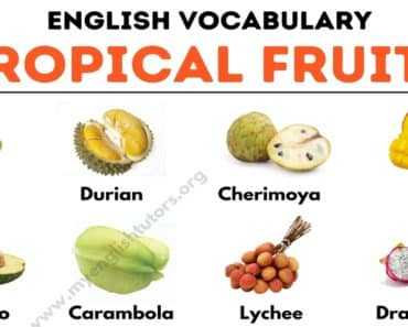 Tropical Fruits: List of 25+ Tropical Fruits You Should Try 2
