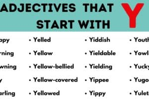 Adjectives that Start with Y: List of 40 Useful Adjectives Starting with Y 5