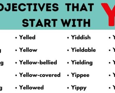 Adjectives that Start with Y: List of 40 Useful Adjectives Starting with Y 6